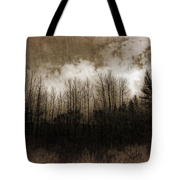 Winter Trees Tote Bag by Dianne Phelps