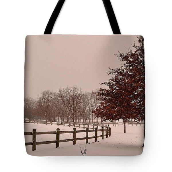 Winter Trees In Park Tote Bag