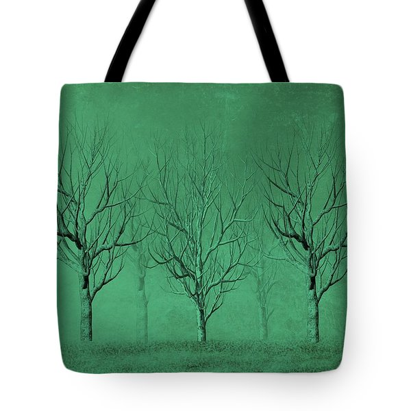 Winter Trees In The Mist Tote Bag by David Dehner