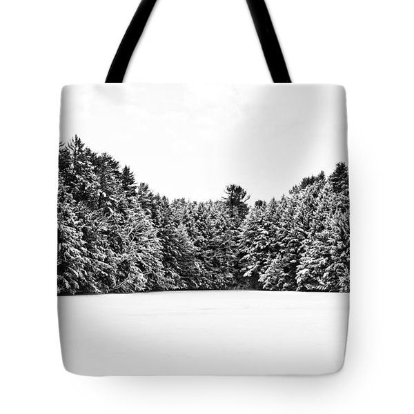 Winter Trees Mink Brook Hanover Nh Tote Bag by Edward Fielding