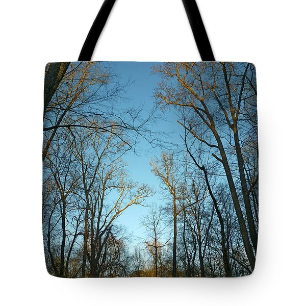 Tote Bag featuring the photograph Winter Trees by Pete Trenholm