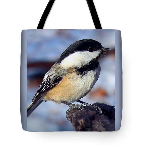 Tote Bag featuring the photograph Winter Visitor by Gigi Dequanne