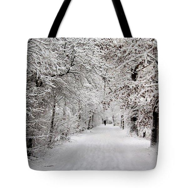 Winter Walk In Fairytale  Tote Bag