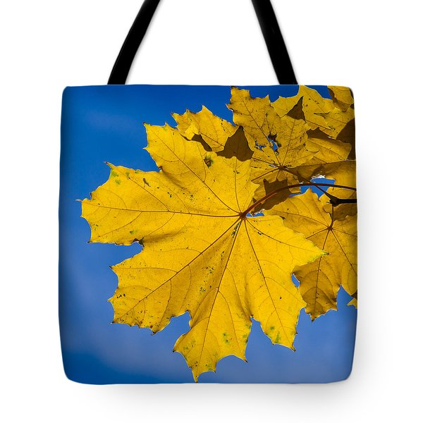 Winter Warmer Tote Bag by Alexander Senin