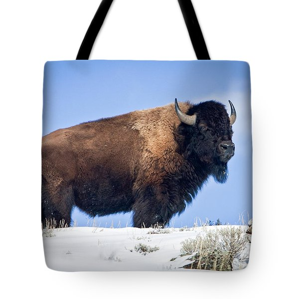 Tote Bag featuring the photograph Winter Warrior by Jack Bell