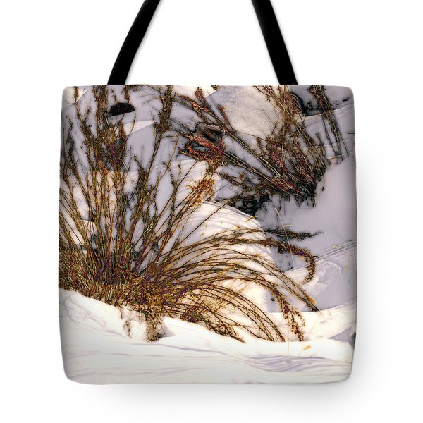 Winter Weeds Tote Bag by Kae Cheatham