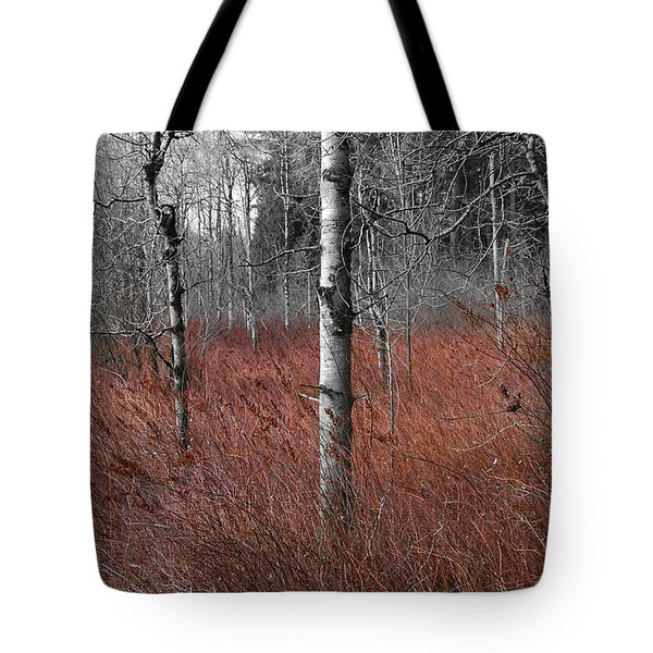 Winter Wetland Tote Bag