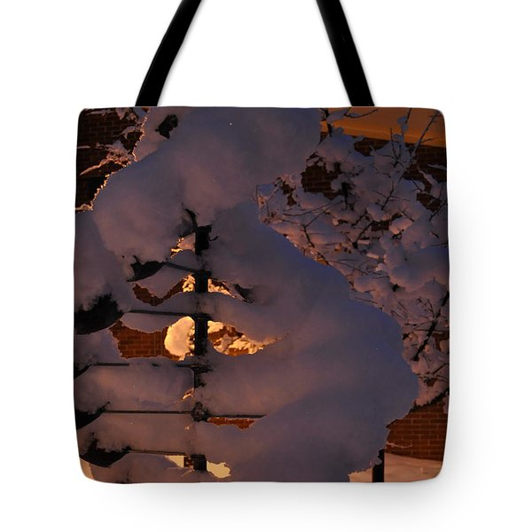 Winter Whirligig Tote Bag