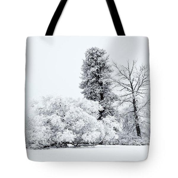 Winter White Tote Bag by Mike  Dawson