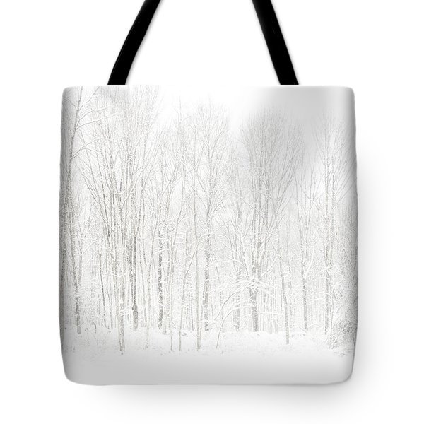 Winter White Out Tote Bag by Karol Livote