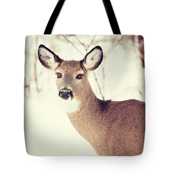 Winter White Tail Tote Bag by Karol Livote