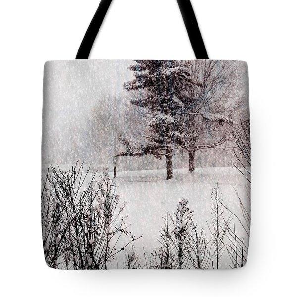 Winter Wonder 2 Tote Bag