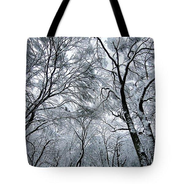 Winter Wonder Tote Bag by Jeff Klingler