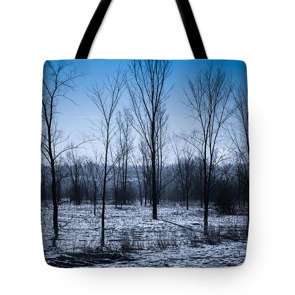Tote Bag featuring the photograph Winter Wonderland by Bianca Nadeau