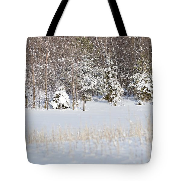 Tote Bag featuring the photograph Winter Wonderland by Dacia Doroff