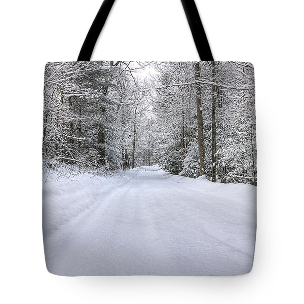Winter Wonderland Tote Bag by Donna Doherty