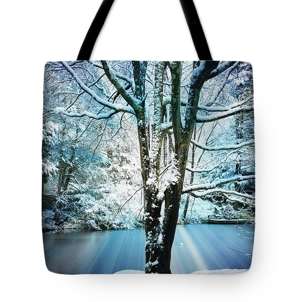 Tote Bag featuring the photograph Winter Wonderland by Judy Palkimas