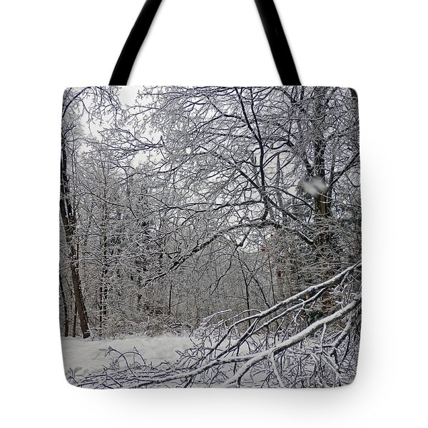 Winter Wonderland Tote Bag by Pema Hou