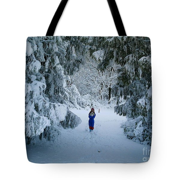 Winter Wonderland Tote Bag by Richard Brookes