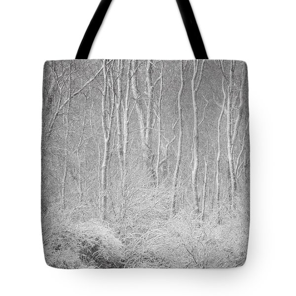 Winter Wood 2013 Tote Bag by Joan Davis