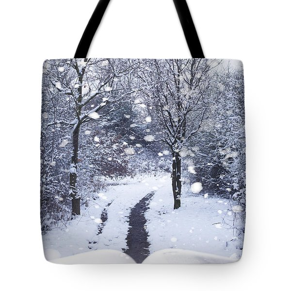 Winter Woodland Book Tote Bag by Amanda Elwell