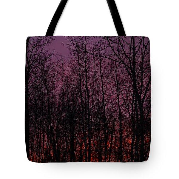 Winter Woods Sunset Tote Bag by Karol Livote