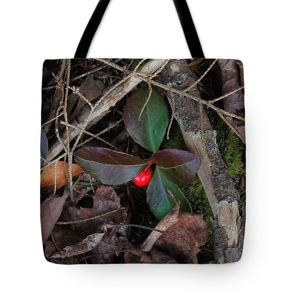 Wintergreen Tote Bag by Mim White