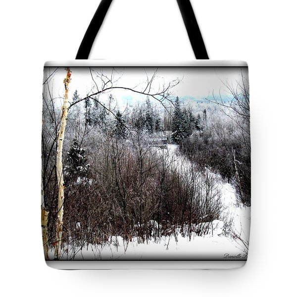 Winterlude Tote Bag by Danielle  Parent