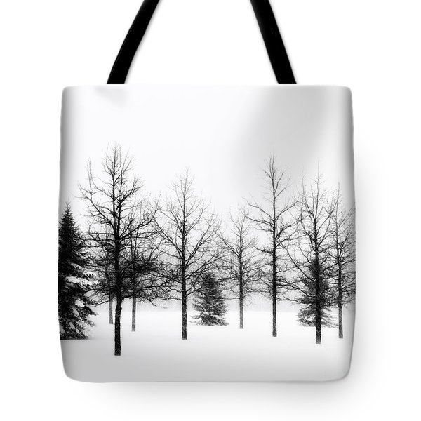 Winter's Bareness II Tote Bag