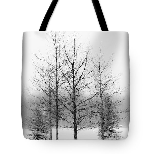 Winter's Bareness  Tote Bag
