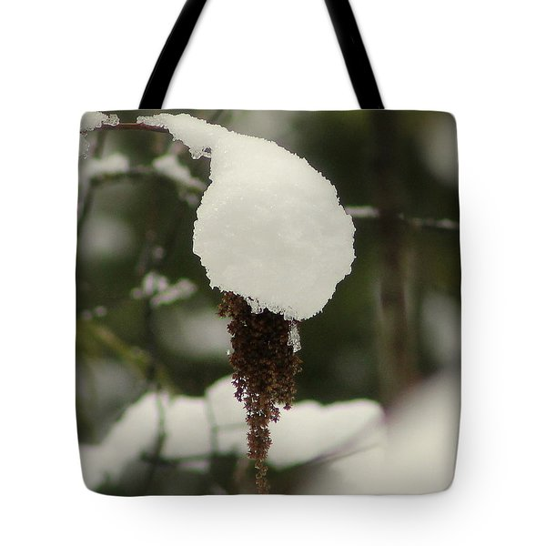 Winter's Cap Tote Bag