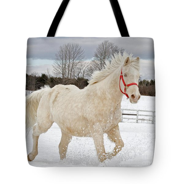 Winters Dance Tote Bag