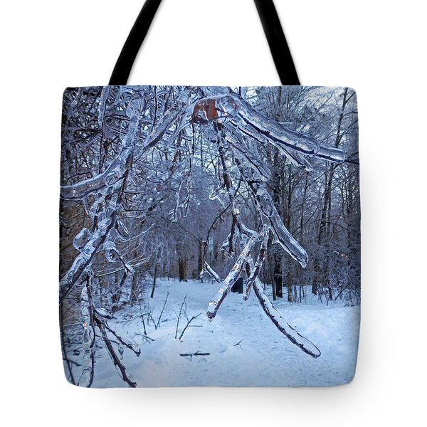 Winter's Day Tote Bag by Pema Hou