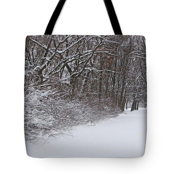 Winters Delight 2 Tote Bag by Cedric Hampton