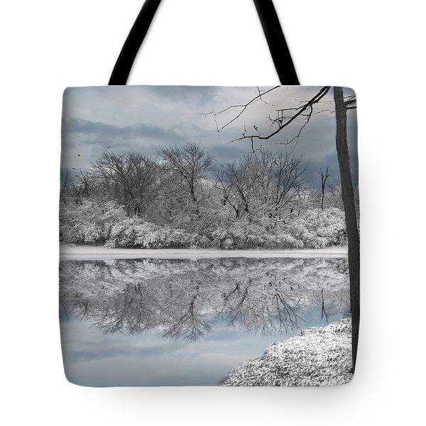 Winters Delight 6 Tote Bag by Cedric Hampton
