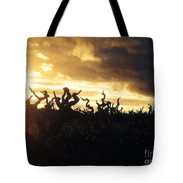Winters Eve In The Vineyard Tote Bag by France  Art