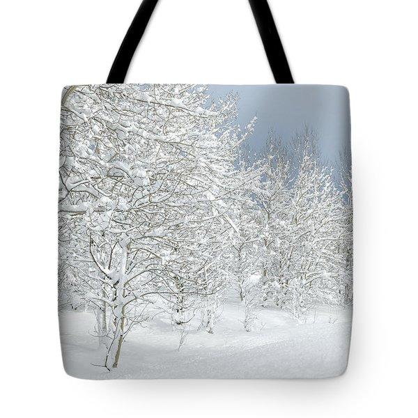 Winter's Glory - Grand Tetons Tote Bag by Sandra Bronstein