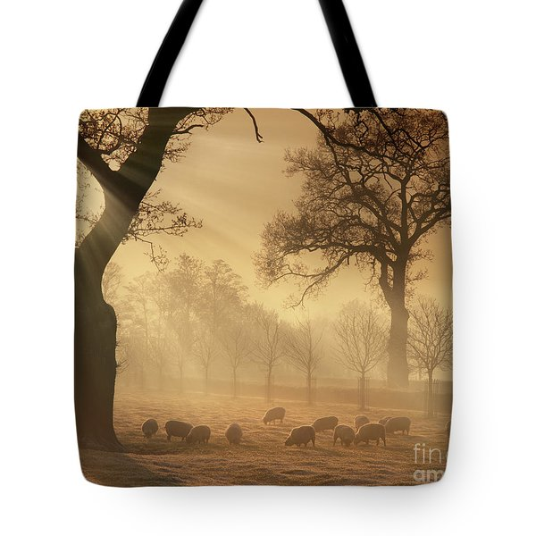 Winter's Gold Tote Bag
