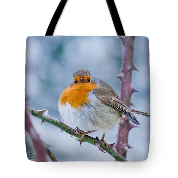 Winters Here Tote Bag