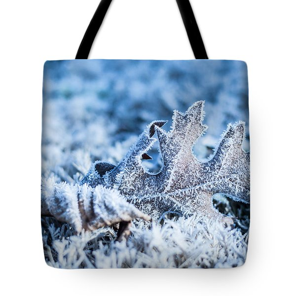 Winter's Icy Grip Tote Bag