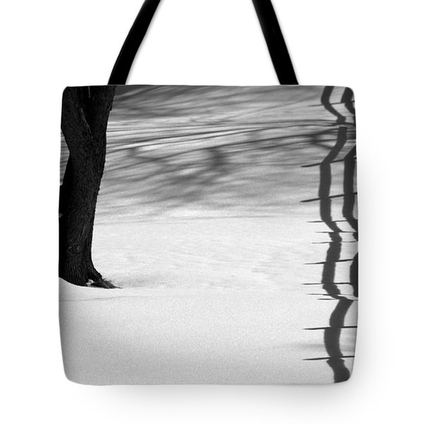 Winters Light Tote Bag by Kenny Glotfelty