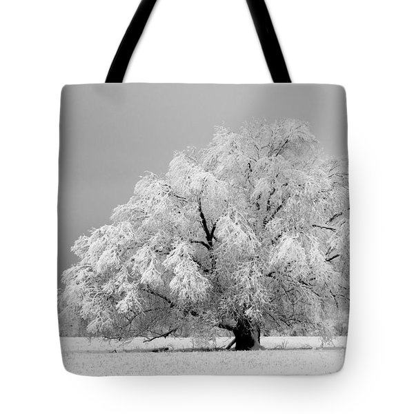 Winter's Majesty II Tote Bag