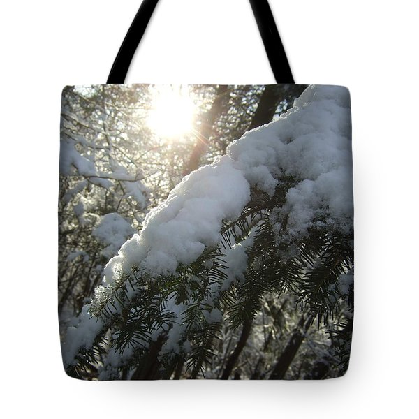 Winter's Paw Tote Bag
