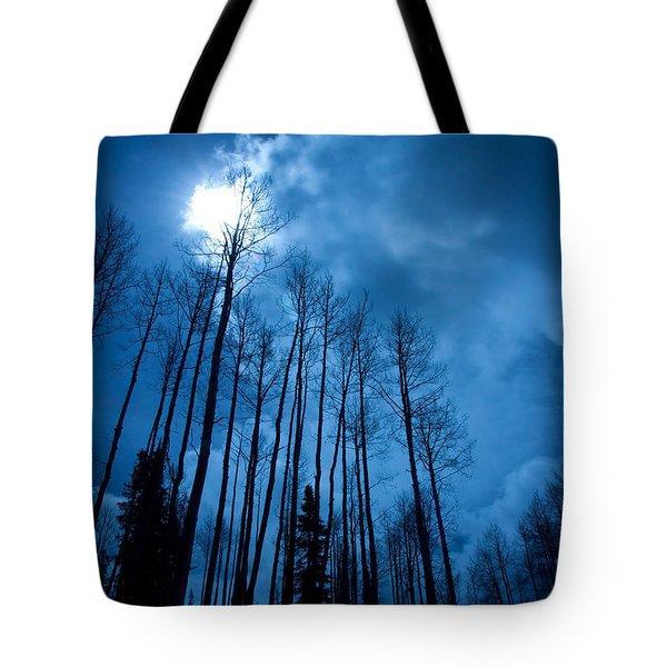 Winters Sky Tote Bag by Dana Kern