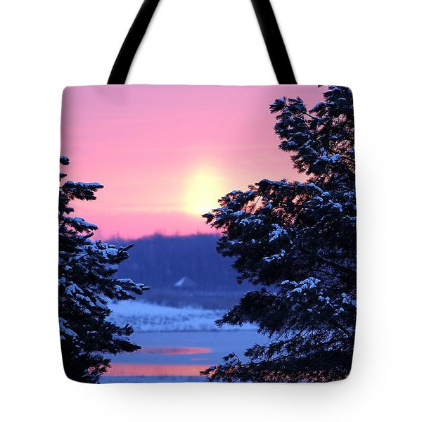 Tote Bag featuring the photograph Winter's Sunrise by Elizabeth Winter
