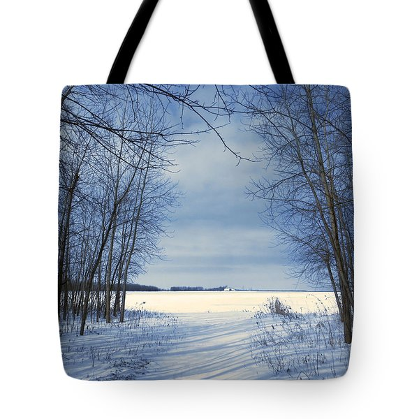 Wintertime At Sheldon Marsh Tote Bag by Shawna Rowe