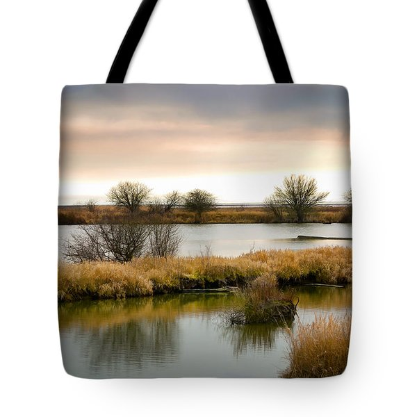 Tote Bag featuring the photograph Wintery Wetlands by Jordan Blackstone