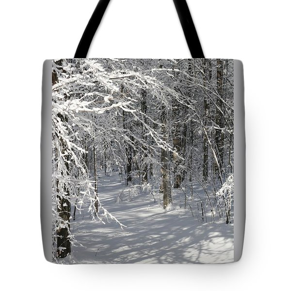Tote Bag featuring the photograph Wintery Woodland Shadows by Patricia Overmoyer