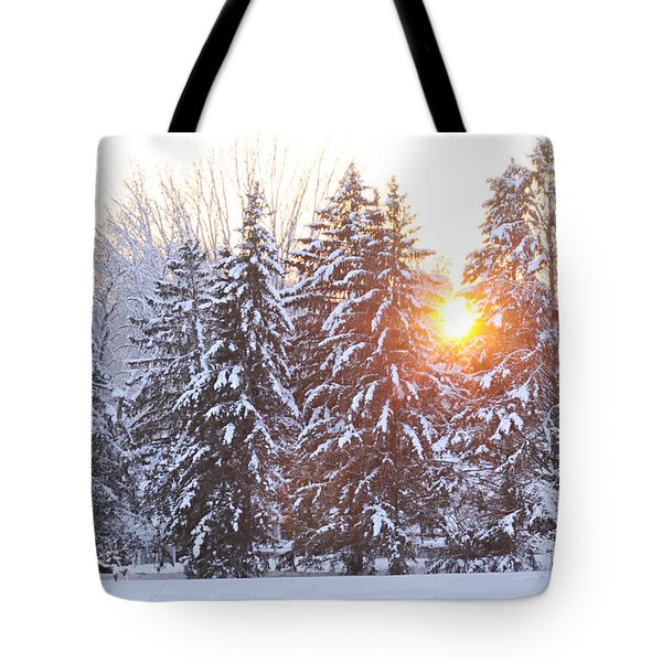 Wintry Sunset Tote Bag by Larry Ricker
