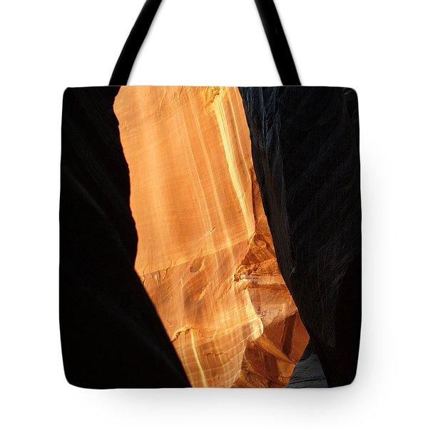 Wire Pass - Buckskin Wash 10 Tote Bag